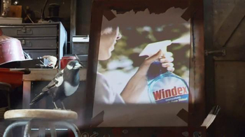 Windex TV Spot, 'Say No to Clear Glass' - Thumbnail 1