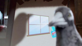 Windex TV Spot, 'Say No to Clear Glass' - Thumbnail 7