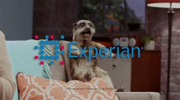 Experian TV Spot, 'Meerkat Sitcom' - Thumbnail 9
