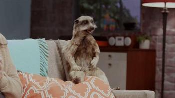 Experian TV Spot, 'Meerkat Sitcom' - Thumbnail 6