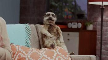 Experian TV Spot, 'Meerkat Sitcom' - Thumbnail 8