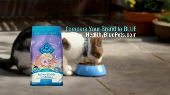 Blue Buffalo For Cats TV Spot, 'Molly' - Thumbnail 9