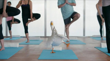 Aflac TV Spot, \'Duck Does Yoga\'