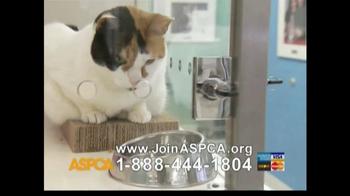 ASPCA TV Spot For Abused Pets - Thumbnail 10
