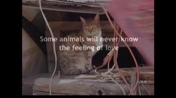 ASPCA TV Spot For Abused Pets - Thumbnail 2