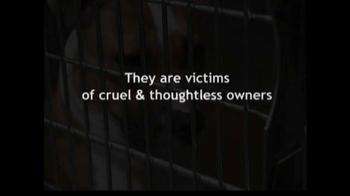 ASPCA TV Spot For Abused Pets - Thumbnail 4