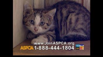 ASPCA TV Spot For Abused Pets - Thumbnail 5