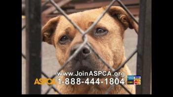 ASPCA TV Spot For Abused Pets - Thumbnail 6