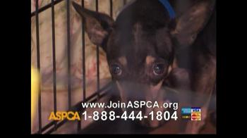 ASPCA TV Spot For Abused Pets - Thumbnail 7