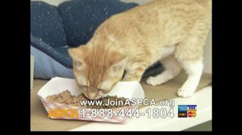 ASPCA TV Spot For Abused Pets - Thumbnail 9