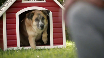 Lowe's TV Spot For Dog House