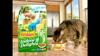 Friskies TV Spot For Indoor Delights - Thumbnail 6