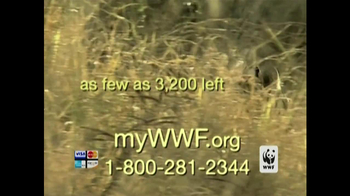 World Wildlife Fund TV Spot 'Poachers' - Thumbnail 5