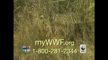 World Wildlife Fund TV Spot 'Poachers' - Thumbnail 7