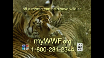 World Wildlife Fund TV Spot 'Poachers' - Thumbnail 8