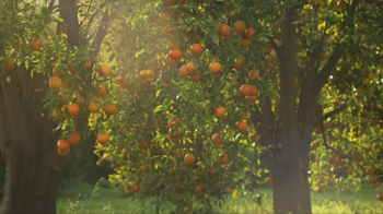 Simply Orange TV Spot For Simply Orange - Thumbnail 4
