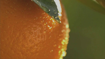 Simply Orange TV Spot For Simply Orange - Thumbnail 6