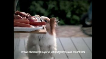 Heartgard Plus TV Spot, 'Outdoors'