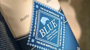 Blue Buffalo TV Spot For Blue Dog Food - Thumbnail 4