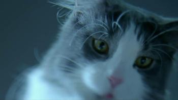 Target TV Spot For Meow Mix - Thumbnail 4
