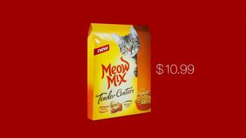 Target TV Spot For Meow Mix - Thumbnail 6