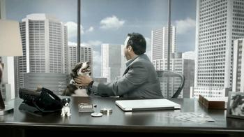 Fast Signs TV Spot For Dan's Dog Food - Thumbnail 10