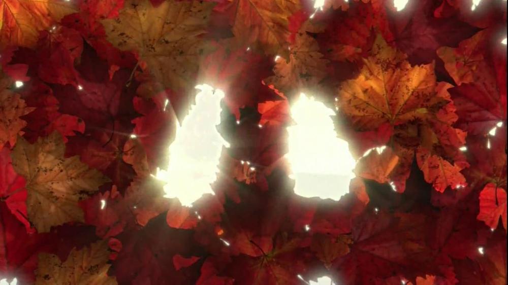 Nasonex TV Commercial For Seasonal Allergies Featuring The Nasonex Bee