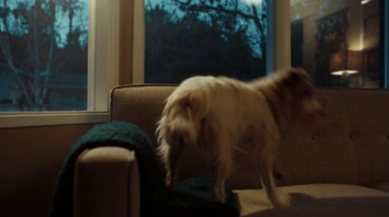 XFINITY Home TV Spot, 'Beware of Dog' - Thumbnail 2