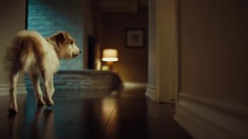 XFINITY Home TV Spot, 'Beware of Dog' - Thumbnail 3