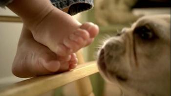 Kibbles 'n Bits TV Spot For Crunchy Kibbles And Meaty Bits - Thumbnail 2