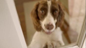 Kibbles 'n Bits TV Spot For Crunchy Kibbles And Meaty Bits - Thumbnail 5