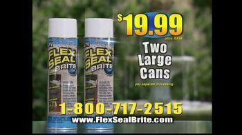 Flex Seal Brite TV Spot, 'Coat, Seal and Stop Leaks'