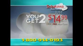 Sobakawa Pillows TV Spot For Knee Pillow - Thumbnail 9