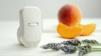 Plug-in Scented Oils thumbnail