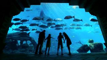 Atlantis TV Spot, 'Two Week Deal'