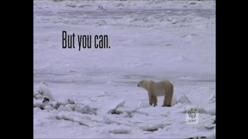 World Wildlife Fund TV Spot, 'Polar Bears' Featuring Lang Lang - 341 commercial airings