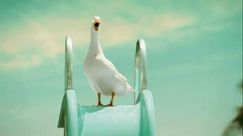 Aflac TV Spot, 'Supplemental Insurance' - 227 commercial airings