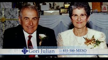 Gori Julian Law TV Spot Featuring Minnie And Joe A.