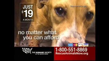 Humane Society TV Spot For Rescue Animals Now