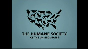 Humane Society TV Spot For Rescue Animals Now - Thumbnail 3