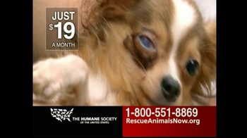 Humane Society TV Spot For Rescue Animals Now - Thumbnail 5
