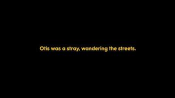 Pedigree TV Spot, 'Otis' - Thumbnail 2