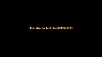 Pedigree TV Spot, 'Otis' - Thumbnail 4