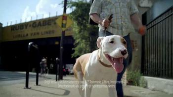 Pedigree TV Spot, 'Otis' - Thumbnail 8
