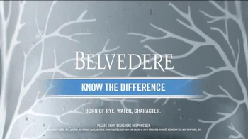Belvedere TV Spot, 'Can I Buy You a Martini'