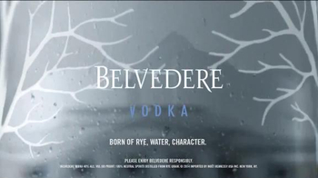 Belvedere TV Spot, 'Can I Buy You a Martini' - Thumbnail 9