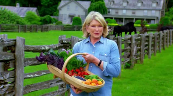 Triscuit TV Spot , 'Summer Snackoff' Featuring Martha Stewart - Thumbnail 8