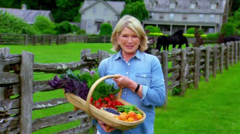 Triscuit TV Spot , 'Summer Snackoff' Featuring Martha Stewart - Thumbnail 9
