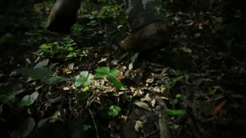 Shell Rotella TV Spot, 'Hiking' - Thumbnail 6