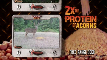 Buck Commander Chestnut Rage TV Spot - Thumbnail 3